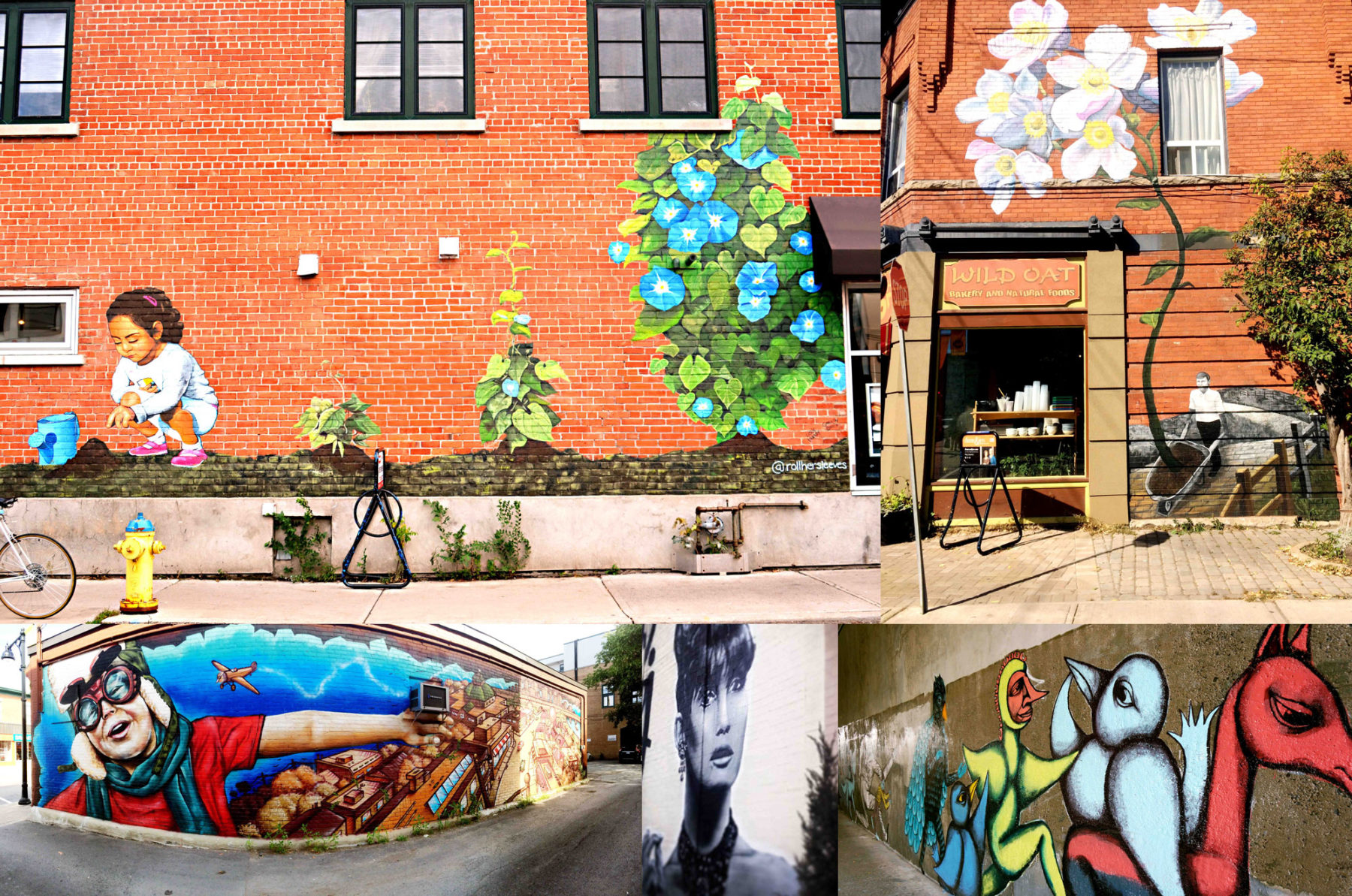 Calling all artists! Glebe Mural Submissions now open