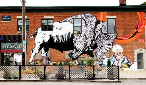 Public Art and Murals
