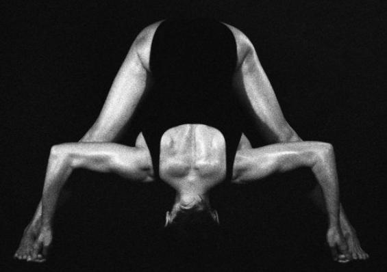 Adishesha Yoga Zone
